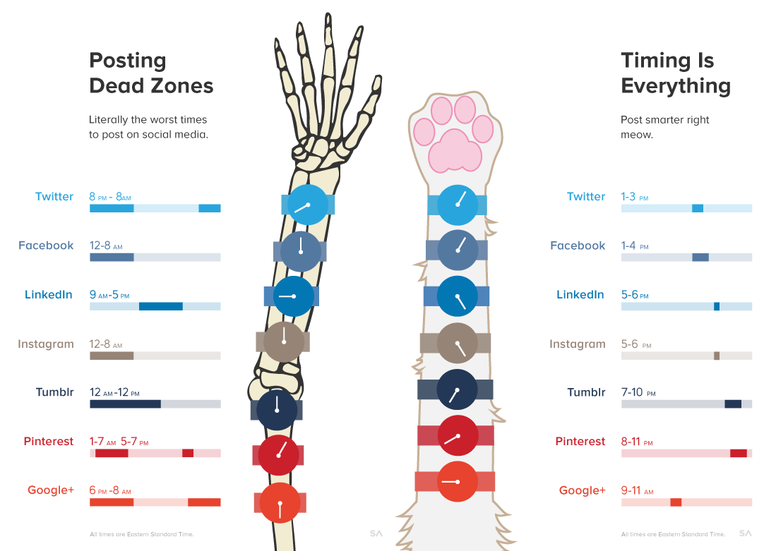 Social media timing infographic